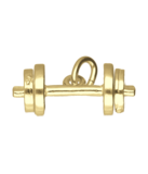 Gouden Halter losse schijven ketting hanger_