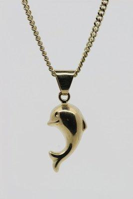 Gouden Dolfijn ketting hanger- 3