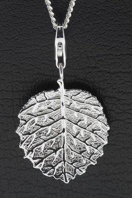 Zilveren Hazelnoot blad hanger én bedel