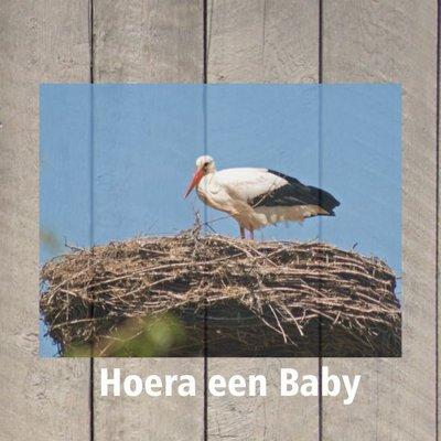 """Wenskaart """"Hoera een baby"""""""
