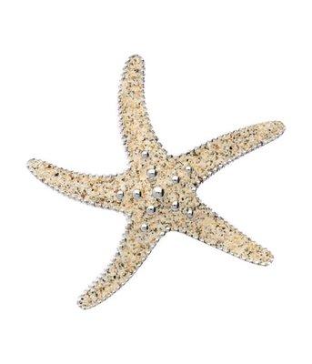 Zilveren Zeester groot met strandzand kettinghanger