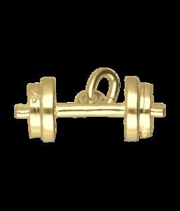 Gouden Halter losse schijven ketting hanger